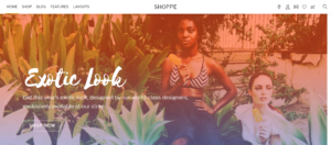 Shoppe - WordPress Membership Theme