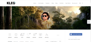 WordPress theme like facebook