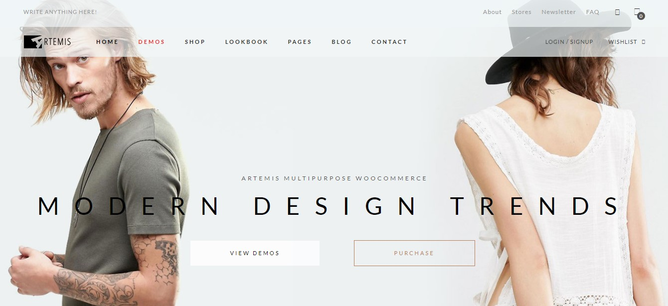 Best ecommerce theme for WordPress