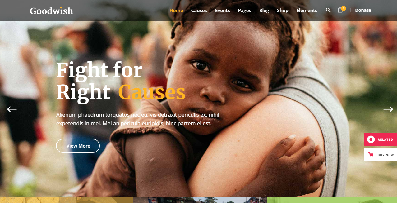 Best ngo website template WordPress