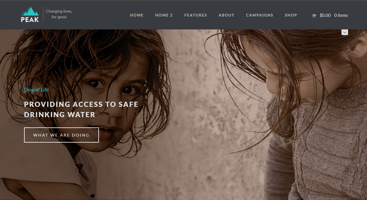 ngo website template wordpress