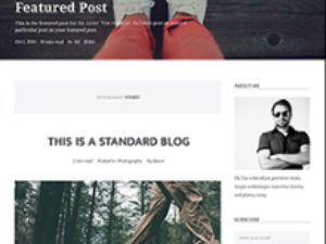 Paid membership Blog - REAL WordPress Theme